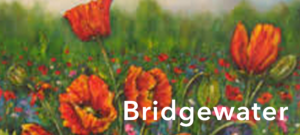 Year 3 | Bridgewater